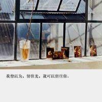 9月24日绿健简报
