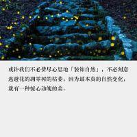 10月1日绿健简报