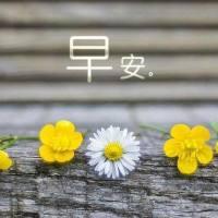 1月17日微语简报