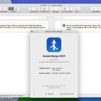 Araxis Merge Pro for mac(文件对比合并同步工具)v2021.5533