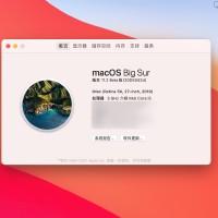 macOS Big Sur 11v11.3Beta版