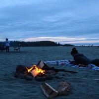 海滩篝火高清动态壁纸