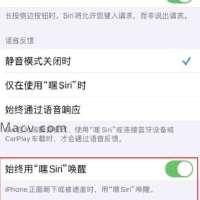 iPhone上Siri无法正常回应如何解决?